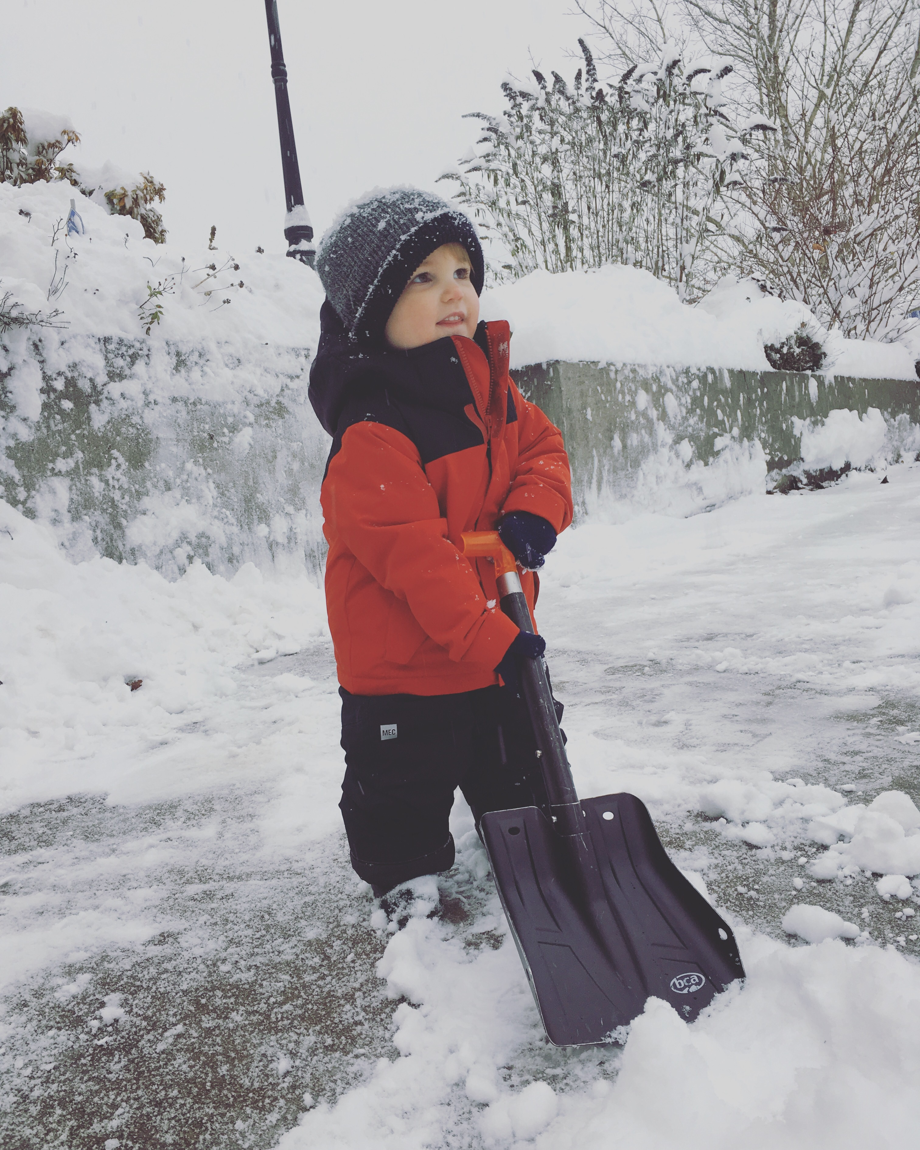 Little helper shoveling the driveway one of his favorite activities