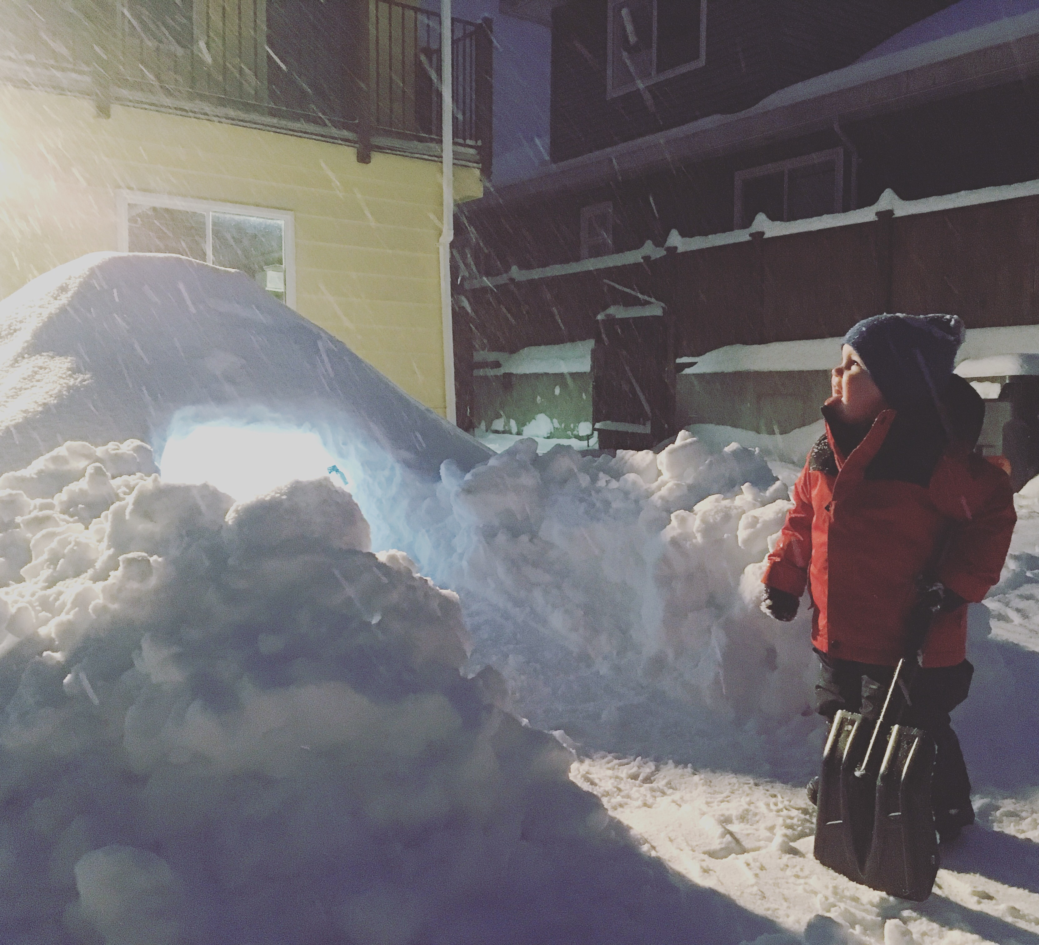 Back yard fort is another fun winter activities